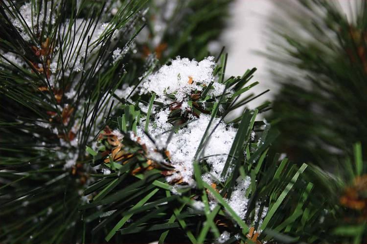 Neve in polvere