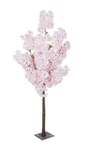 Albero fiori ciliegio rosa 140h