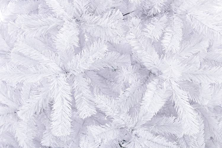 Albero natale abete bianco 210h