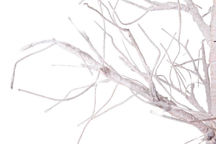 Albero natale betulla rami bianchi con luci led 120h