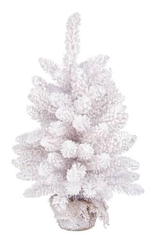 Albero pino bianco con neve 45h
