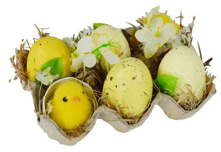 Decorazione pasqua cartone 6 uova con pulcini