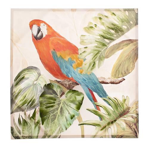 Quadro a olio pappagallo 100x100