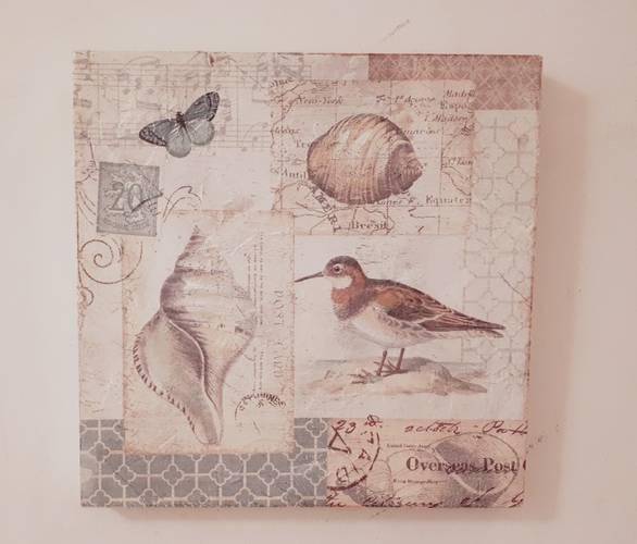 Quadro conchiglie 1 postcard 30x30