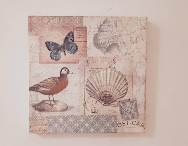 Quadro conchiglie 2 postcard 30x30