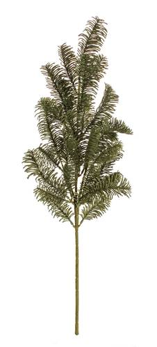 Ramo di pino verde 66h