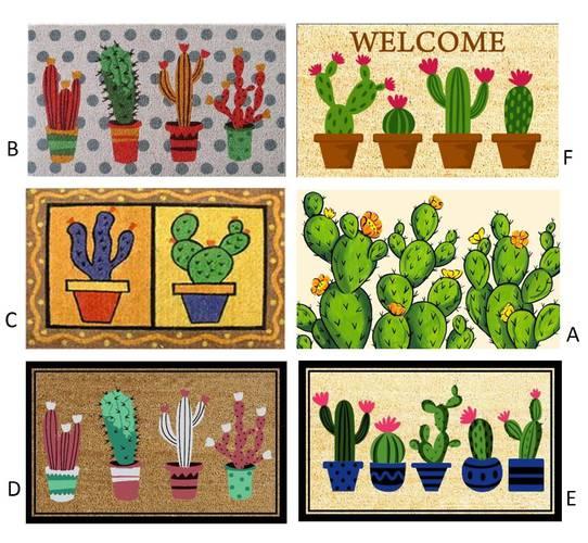 Zerbino cocco colorato disegno piante cactus