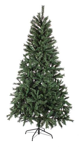 Albero pino verde brunico