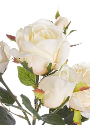 Fiore rosa champagne 5 boccioli 60h